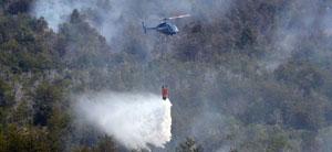 (foto) El incendio en Chubut ya arras� con 15 mil hect�reas de bosque