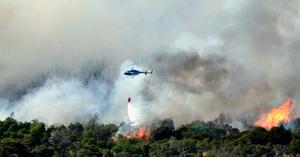 El bosque de Aluminé está siendo arrasado por el fuego