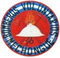 Bomberos Voluntarios de Mechongue