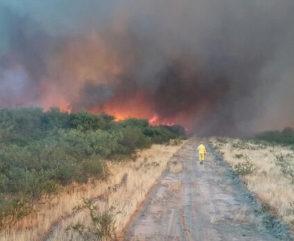 Incendios en La Pampa: informe del trabajo de los brigadistas