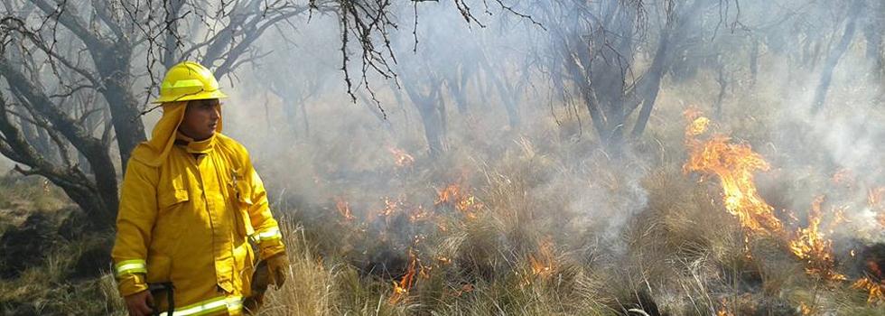 Alerta Amarilla por Incendios Forestales en La Pampa