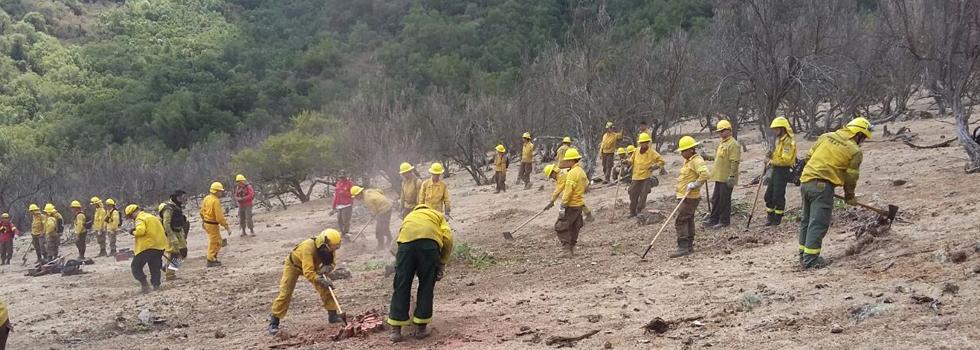La emergencia forestal de Chile llega a su fin