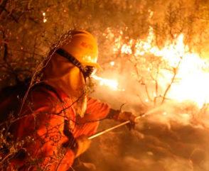 Incendios Forestales en la región: respuesta del SNBV