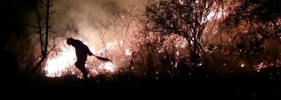 Bomberos Voluntarios combatieron durante una semana el fuego en las Sierras de Córdoba