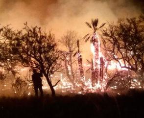 Intervención de la Brigada Nacional de Incendios Forestales en Córdoba