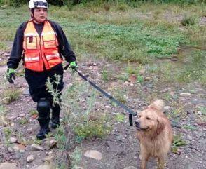 Bomberos voluntarios colaboran en la búsqueda de Constanza Gala Cancinos