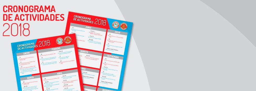 Cronograma de Actividades 2018
