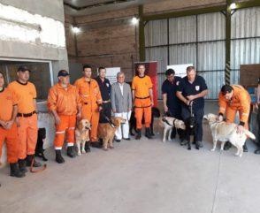 Las Brigadas K9 trabajan en un operativo de búsqueda en Chaco
