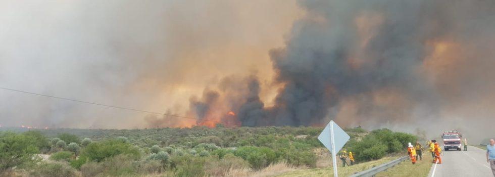 Incendios Forestales en San Luis