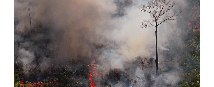 Bomberos Voluntarios parten al Amazonas