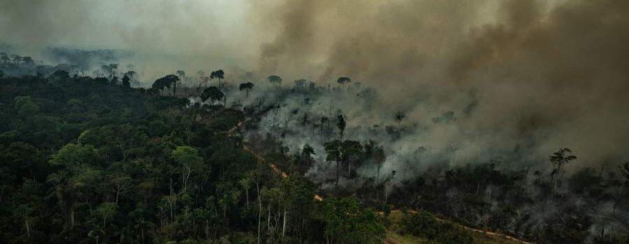 6OO Bomberos Voluntarios listos para viajar al Amazonas