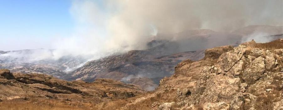 Más de 140 bomberos voluntarios combaten incendios forestales en Córdoba