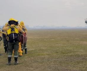 Incendios Forestales en Paraná
