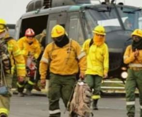 Bomberos Combatieron Incendios Forestales en Islas del Paraná