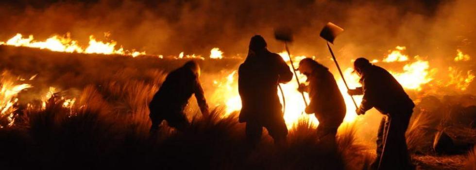 Incendios Forestales en Catamarca y Entre Ríos