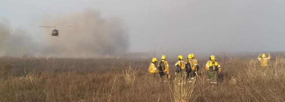 Nuevos Focos de Incendios Forestales en el Delta del Paraná