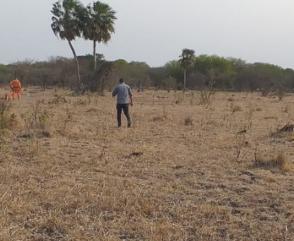 Brigada Nacional K9 finalizó operativo de búsquedas en Chaco