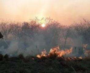 Alerta Amarilla por Incendios Forestales en Corrientes y Misiones