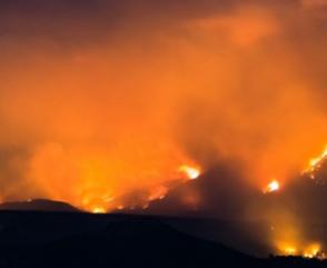 Bomberos Combaten Incendio Forestal en El Bolsón