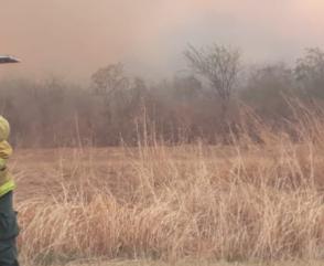 Bomberos combaten incendios forestales en diferentes puntos del país
